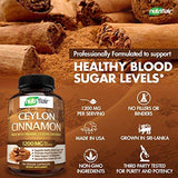 NutriFlair Ceylon Cinnamon (made with Organic Ceylon Cinnamon) 1200mg per Serving, 120 CAPSULES - Healthy Blood Sugar Support, Joint Support, Anti-inflammatory & Antioxidant - True Sri Lanka...