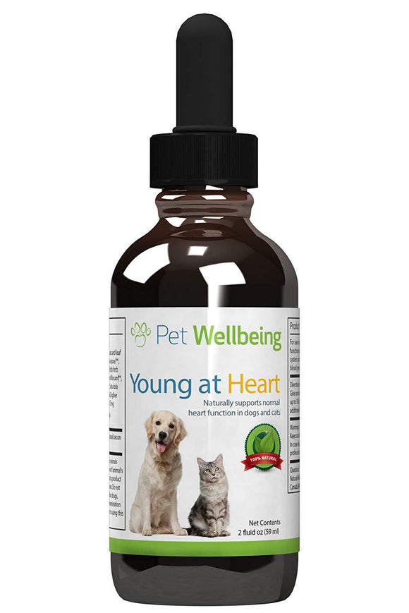 Pet Wellbeing Young at Heart for Dogs - Natural Support for Your Dogs Heart