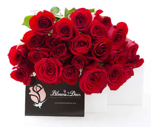 Red Roses (Long Stem - 50cm)