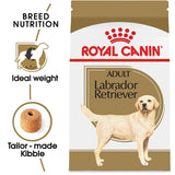 Royal Canin Breed Health Nutrition Labrador Retriever Adult Dry Dog Food
