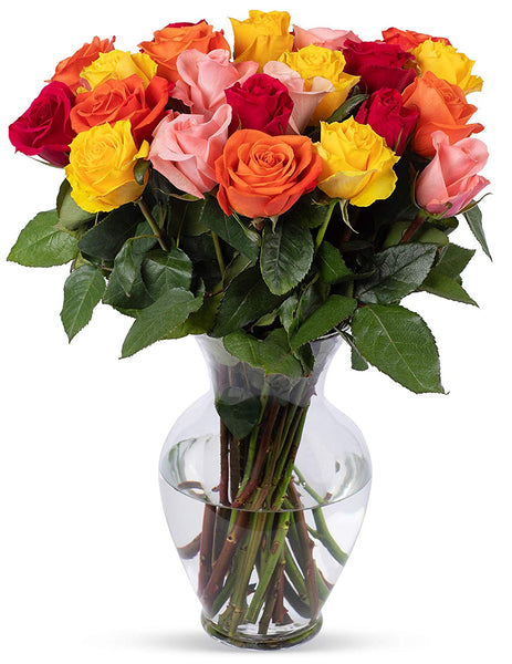 2 Dozen Rainbow Roses, With Vase (Fresh Cut Flowers)