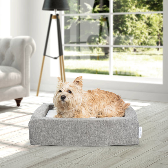 Molecule Air-engineered Dog Bed, Small