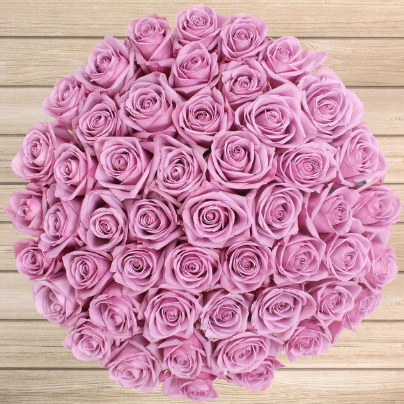 50-stem Purple Roses