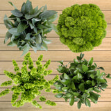 100-Stem Assorted Green Fillers