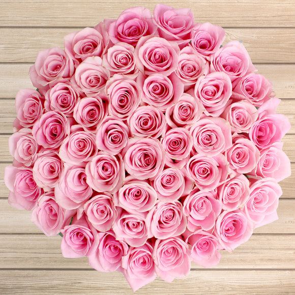 50-stem Light Pink Roses