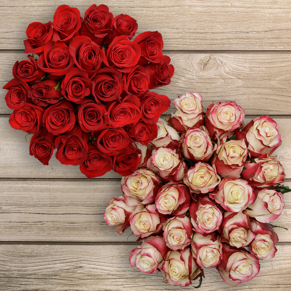 50-stem Red & Bi-color Red/White Roses