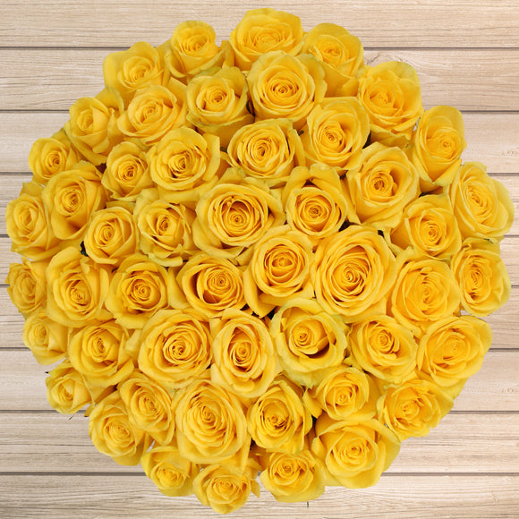 50-stem Yellow Roses