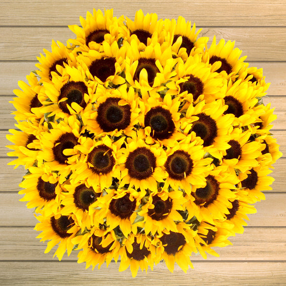 40-Stem Sunflowers