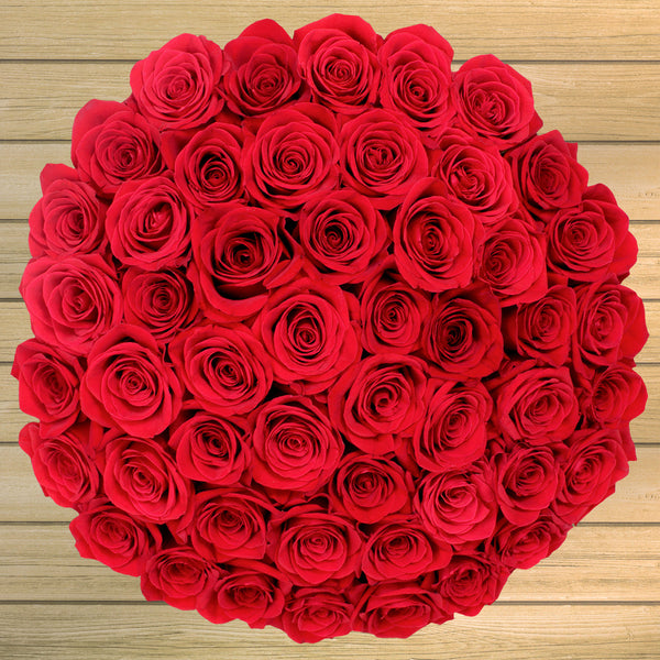50 Stem Valentine's Day Red Roses