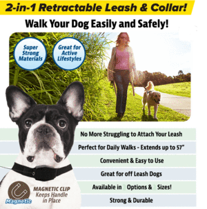 Retractable Leash & Collar For Dogs
