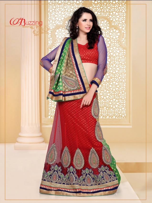 Net Embroidered  Red Saree