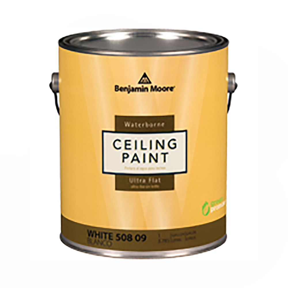 INTERIOR SPECIALTY Ceiling Paint Waterborne Ultra-Flat White