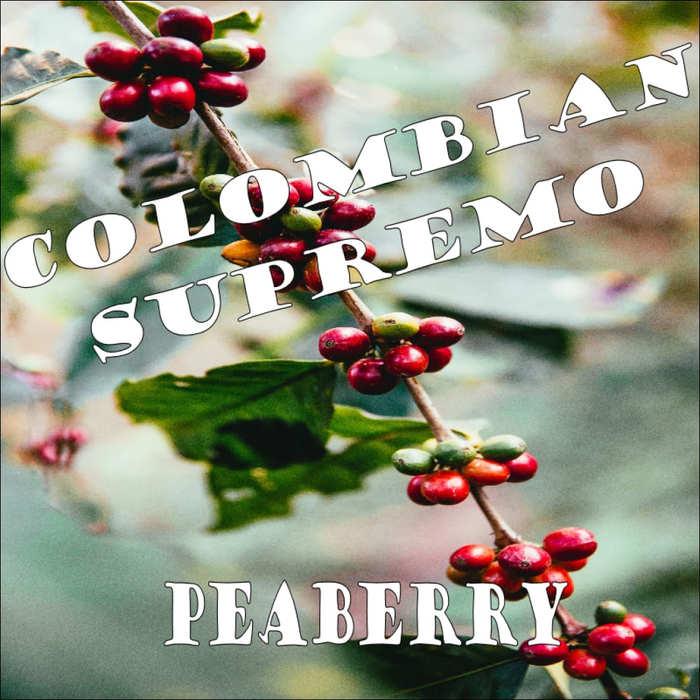 Colombian Peaberry Coffee - Coffee 339 Coffee Roasters