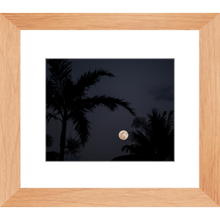 Load image into Gallery viewer, Moon gazing through the palms