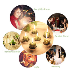 6 Pcs/Set Unique Cactus Candle-Smart Garden Shop