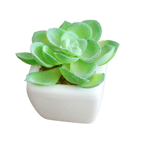Artificial Succulent Plant in Pot-Smart Garden Shop