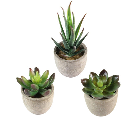 3 Pcs Succulent Artificial Plants with Pots