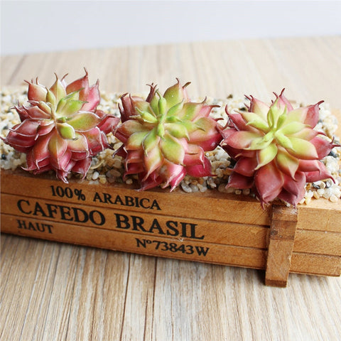 Artificial Succulent Cactus-Smart Garden Shop
