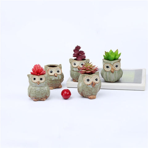 5 Pcs Ceramic Mini Owl Flowerpot-Smart Garden Shop