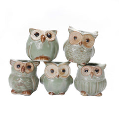 5 Pcs Ceramic Mini Owl Flowerpot