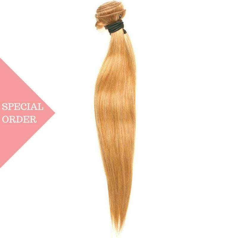Honey Blonde Straight Extensions