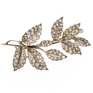 Edwardian Diamond Leaf Brooch