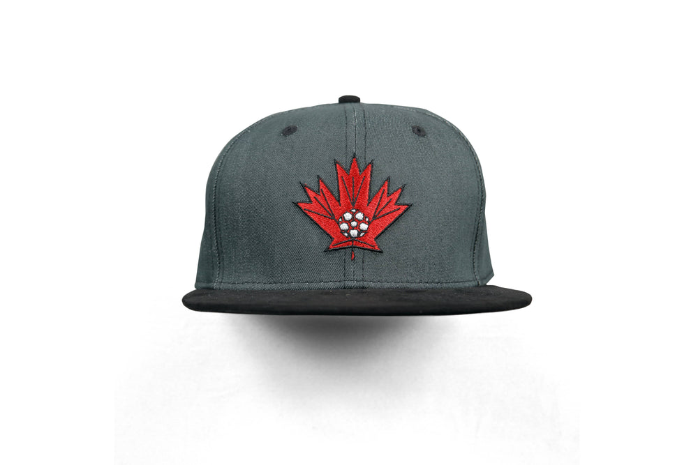 Northern Football Edition-One Denim Flat Brim Snapback