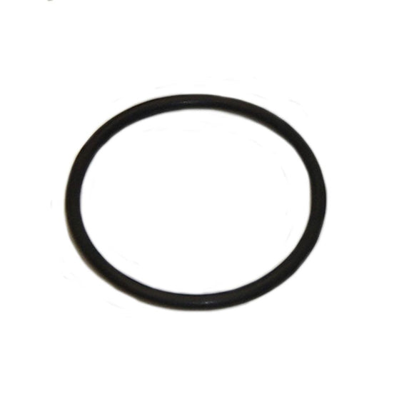 100747A1 O-Ring