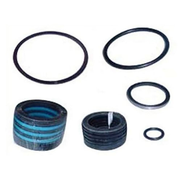 251165 Hydraulic Cylinder Seal Kit