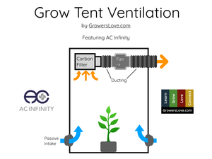 Grow Tent Ventilation Guide