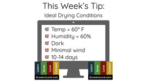 Ideal Drying Conditions