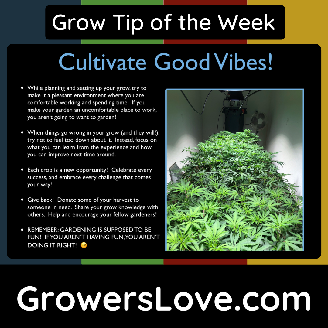 Cultivate Good Vibes!
