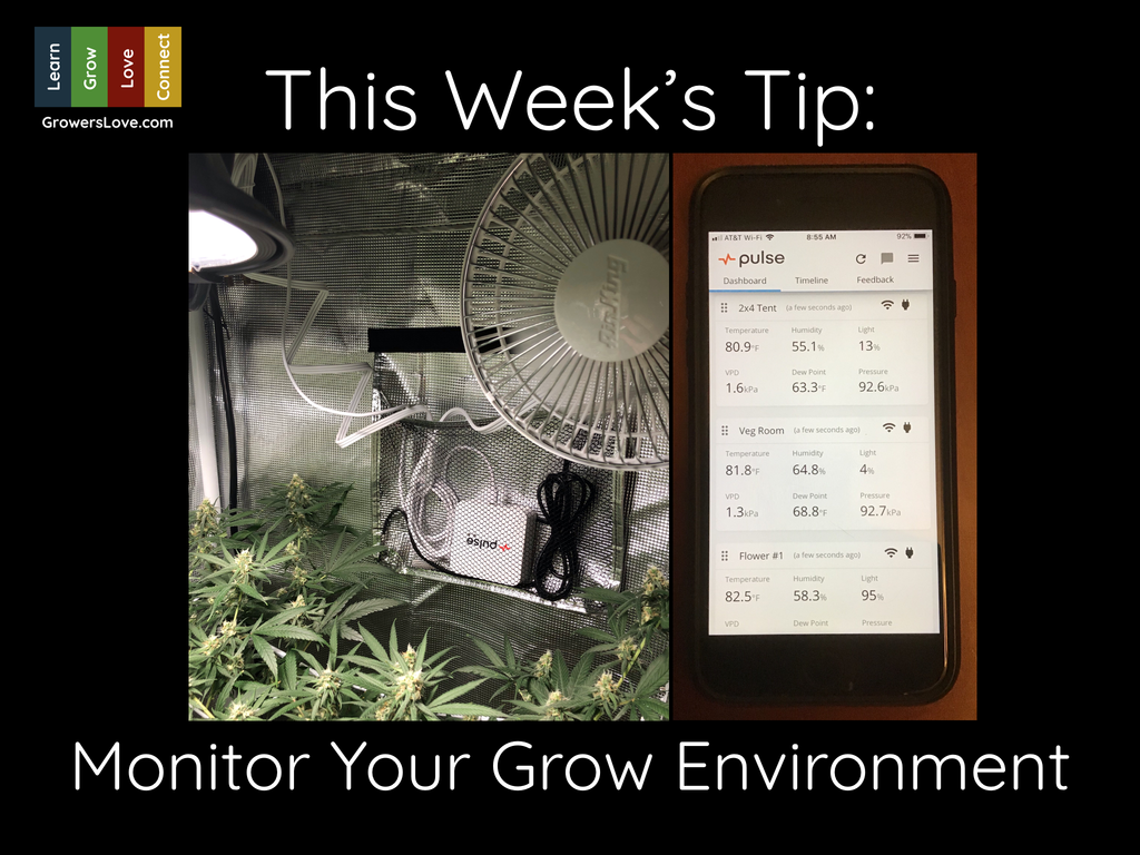 Monitor Your Grow Environment