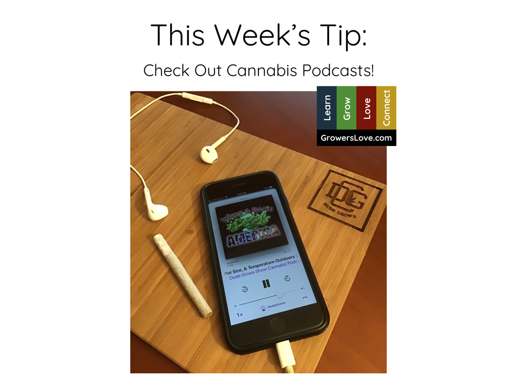 This Week's Tip, Check out Cannabis Podcasts