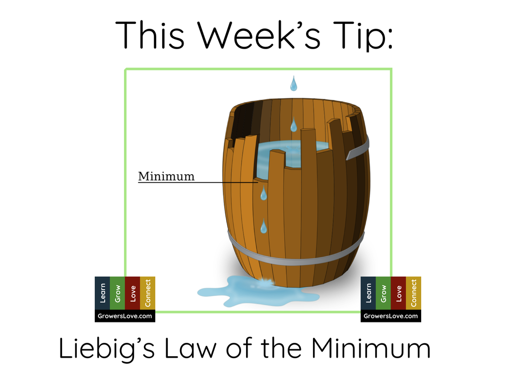 This Week's Tip: Liebig's Law of the Minimum