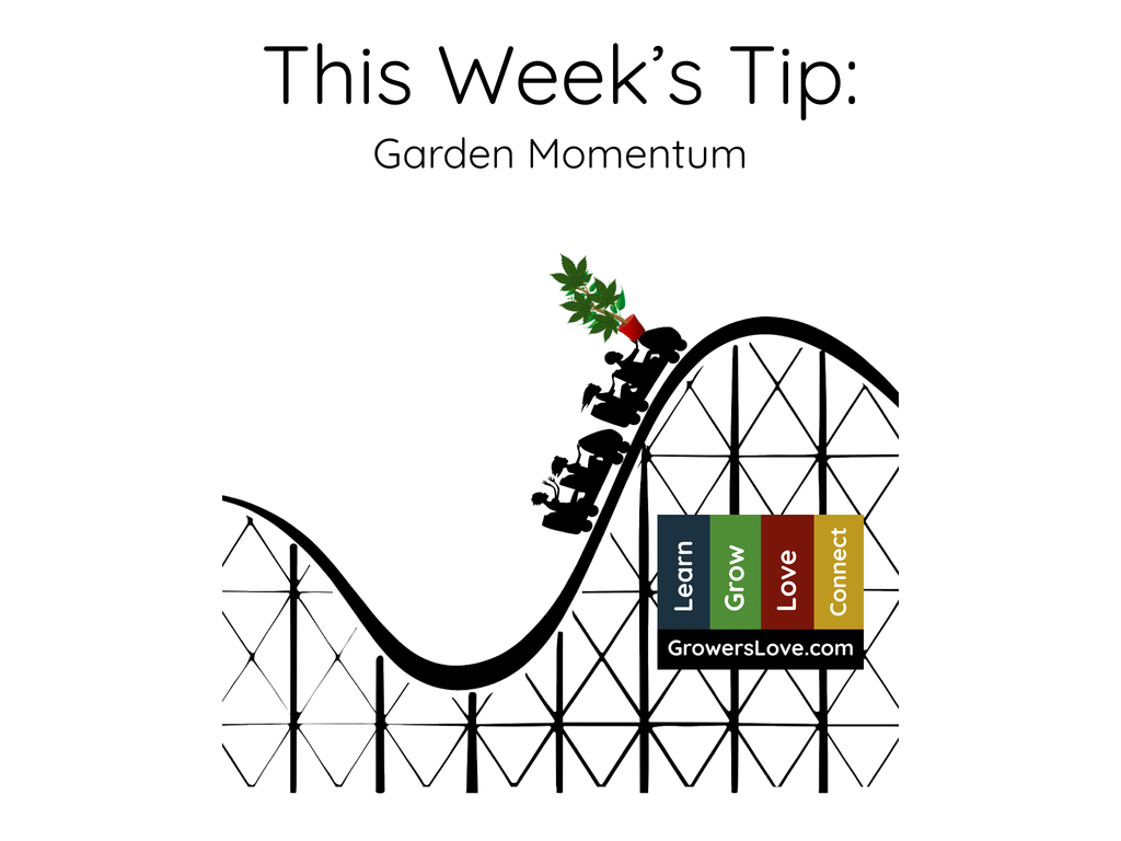 This Week's Tip: Garden Momentum