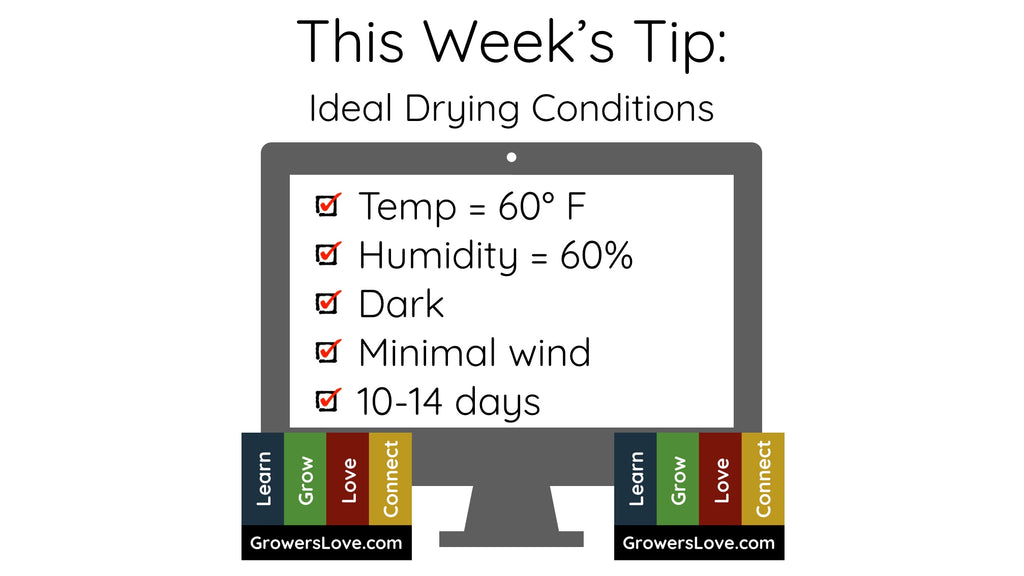 This Week's Tip: Ideal Drying Conditions