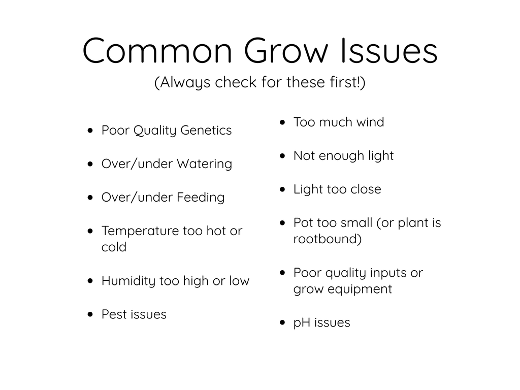 Common Grow Issues