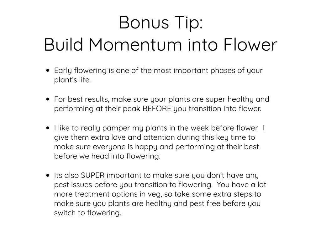 Build momentum into flower
