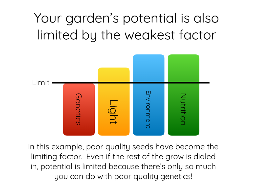 Your garden's potential is also limited by the weakest factor