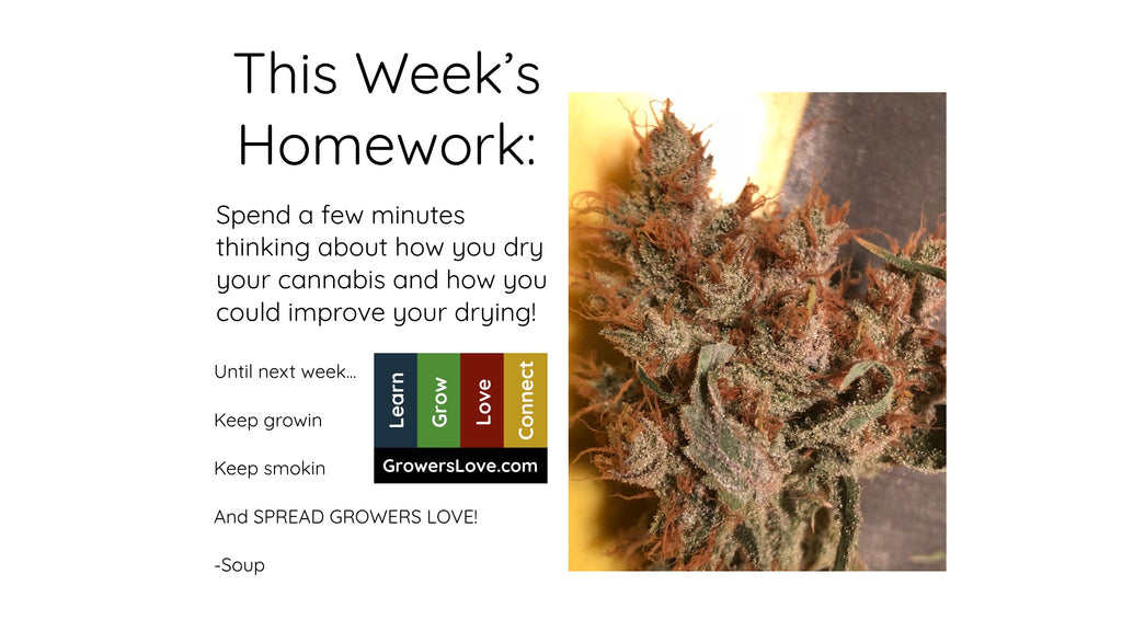 This Week's Homework: Think about drying