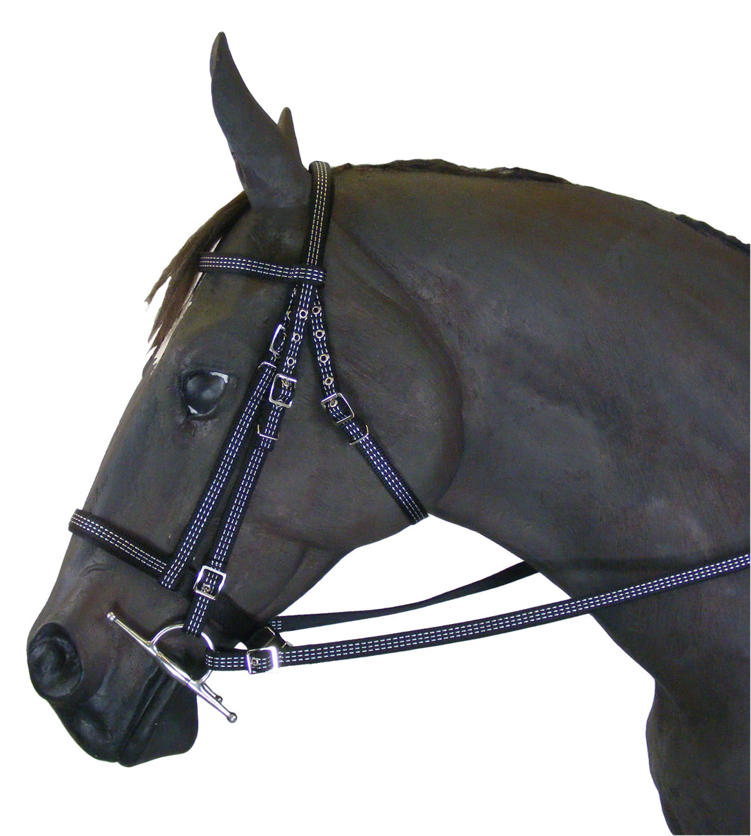 Reflective Bridle