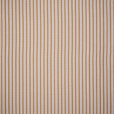 Sketched Stripe // Gold