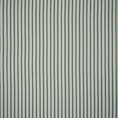 Sketched Stripe // Green