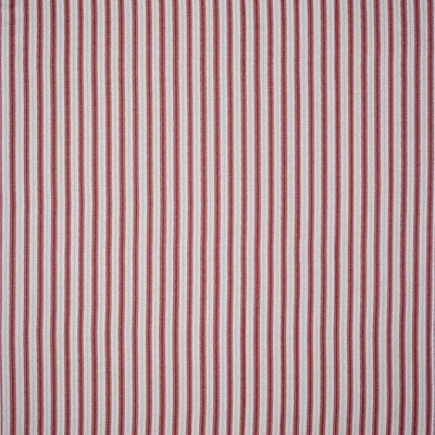 Sketched Stripe // Red Pale Green