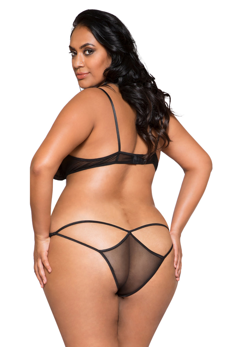 Plus Size Sheer Mesh & Lace Bra Set