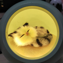 Load image into Gallery viewer, Sleepy Cat Night Lamp