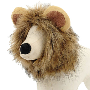 Funny Pet Hair Lion Costume