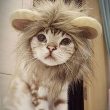 Load image into Gallery viewer, Funny Pet Hair Lion Costume