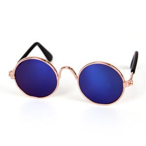 Cute Cat Sunglasses